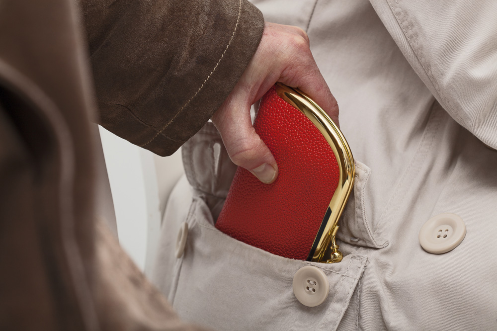 Pickpocket Tips to Keep in Your Back Pocket!