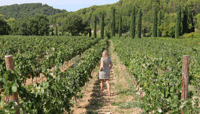Postcards from Provence – Menerbes
